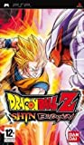 Dragon Ball Z Shin Budokai - platinum