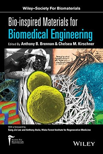 Bio Inspired Materials For Biomedical Engineering  Wiley Society For Biomaterials