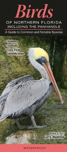 Birds of Northern Florida including the Panhandle: A Guide to Common & Notable ()