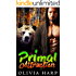 Primal Attraction (Shadowlands Bear Shifters Book 2)