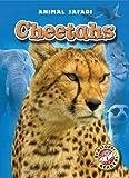 Cheetahs, Megan Borgert-Spaniol, 160014716X
