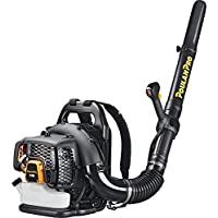 Poulan Pro PR48BT 475 CFM 48cc Gas Backpack Blower (Black)