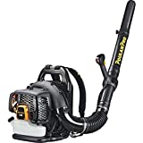 Poulan Pro 967087101 48cc Backpack Blower