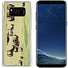 Luxlady Samsung Galaxy S8 Clear case Soft TPU Rubber Silicone IMAGE ID 30719401 Horses in the mountains equine nag hoss hack dobbin a solid hoofed plant eating domesticate