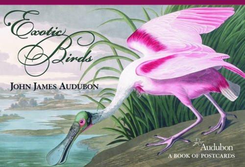 John James Audubon Exotic Birds Book of Postcards Aa580 PDF