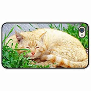 iPhone 4 4S Black Hardshell Case fat sleep grass Desin Images Protector Back Cover