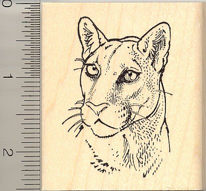 Gorgeous Cougar Portrait Rubber Stamp - Wood Mounted