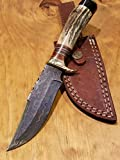Handmade Deer Antler Handle Hunting Knife Damascus Blade Stag Collection With Leather Sheath Premium (A215)