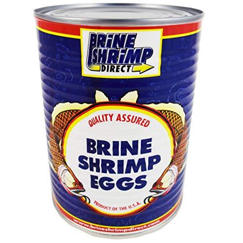 Grade A (80%) Brine Shrimp Eggs, 16 - Shrimp Brine Grade