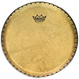 remo congas head - Remo Symmetry Skyndeep Conga Drumhead - Calfskin Graphic, 9.75