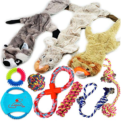 Lobeve Dog Toys Gift Set,Variety No Stuffing Squeaky Plush Dog Toy and Cotton Rope Puppy Toys Bundle for Medium to Small Doggie (Best Toys For New Puppies)