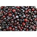 100 Garden Huckleberry Ground Cherry Solanum Melanocerasum Berry Fruit Bush Seed #DS01