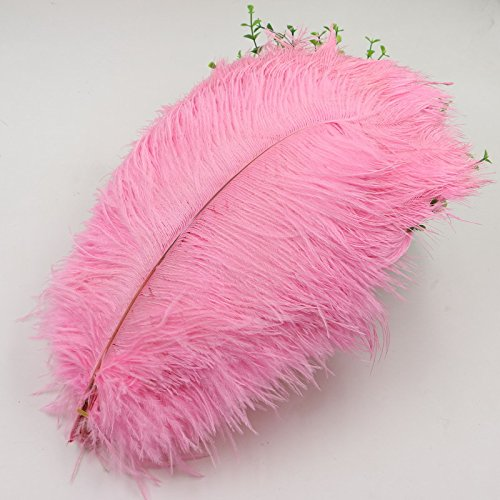 Ostrich Feather 12 to 14'' All Hard Stem - Ship From New York (pink)