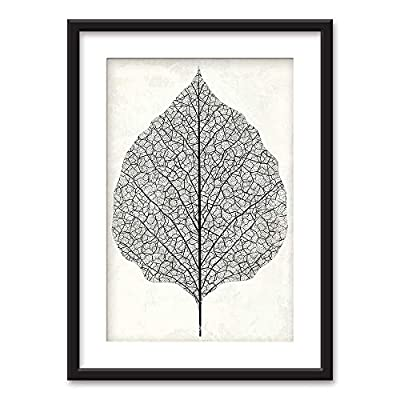 Framed Black and White Leaf - Framed Prints