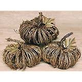 Natural Woven Grapevine Twig Pumpkin (3)