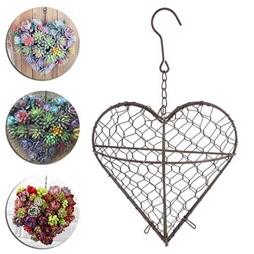 Metal Wall Hanging Plant Holder Heart Shape Succulent Flower Pot Decor Basket
