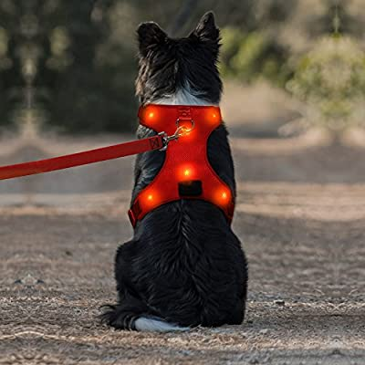 Domi LED Dog Harness, USB Rechargeable No Pull Pet Vest Harness with Comfortable Padded Suit for Small/ Medium/ Large Dog
