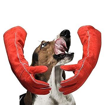HLDUYIN Manipulación de Animales Guantes Anti-mordedura/rasguño, Guantes duraderos, Perro Gato pájaro Serpiente Loro Lagarto Animales Salvajes Guantes de ...