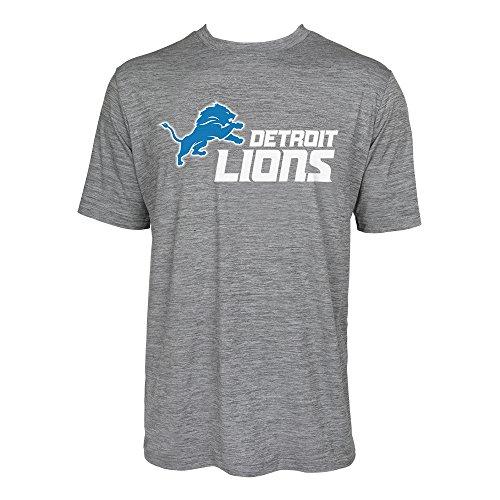 NFL Detroit Lions Men's Tonal Gray Wordmark Logo Tee, Gray, XX-Large -