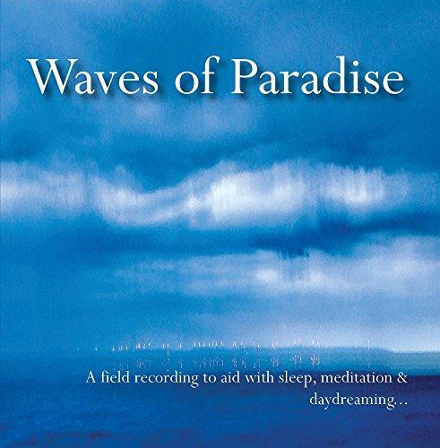 Waves Paradise Recording Meditation Daydreaming