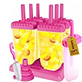 Best Ice Popsicles - Popsicle Molds Set - BPA Free - 6 Review