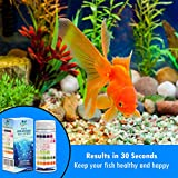 6 in 1 Aquarium Test Strips with Thermometer   Fast & Accurate Water Quality Testing Kit for Aquariums & Ponds   Monitors pH, Hardness, Nitrate, Temperature and More