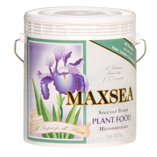 Maxsea All Purpose Plant Food 20 lb by Maxsea by Maxsea
