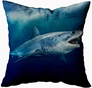 KIOAO 20X20 Pillow Case, Standard 20X20Inch Soft Square Throw Pillowcase Covers Fall Pillow Cover Shark Short Fin - Printed with Both Sides,Halloween