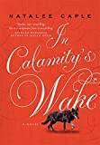 Image of In Calamity's Wake