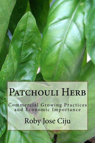 Patchouli Herb by [Ciju, Roby Jose]