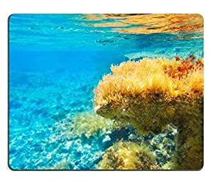 Mouse Pad Natural Rubber Mousepad Ibiza Formentera underwater anemone seascape in golden and turquoise IMAGE ID 14263222
