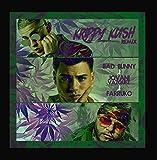 Krippy Kush Remix (feat. Farruko & Jovani Vazquez)