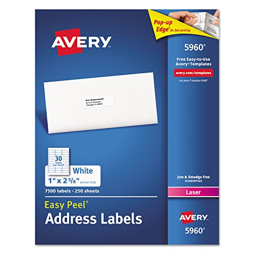 Avery 5960 Laser Labels, Mailing, 1