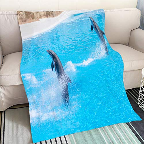 Art Design Photos Cool Quilt Some Dolphins are Jumping Through The Blue Water Hypoallergenic Blanket for Bed Couch Chair