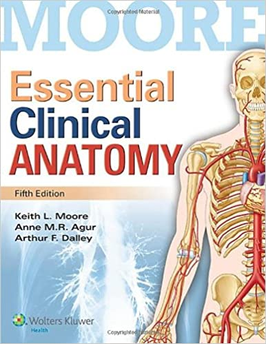 Image result for moore's clinical anatomy