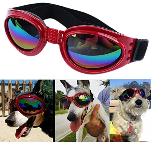 QUMY QUMY Dog Goggles Eye Wear Protection Waterproof Pet Sunglasses for Dogs About Over 15 Lbs ()