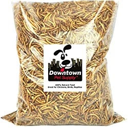 Downtown Pet Supply Dried Mealworms 100% Natural Treats for Wild Birds, Chickens, Reptiles, Fish, Turtles - Meal Worms Dried Food for Birds, Turkeys (1 LB)
