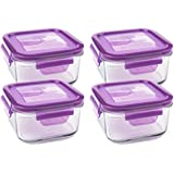 Wean Green Garden Pack Lunch Cubes Glass Food Containers