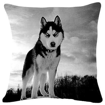Groovy Amazon Com Husky Dog Hill Snow Throw Pillow Case Cushion Cjindustries Chair Design For Home Cjindustriesco