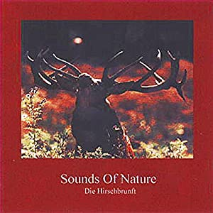 Sounds Of Nature - Die Hirschbrunft Hörbuch