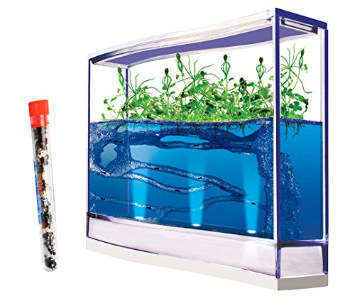 GIANT Live Lighted Ecosystem Gel Ant Habitat Shipped with 25 Live Ants Now (1 Tube of Ants) – Lights Up -3 Times larger than Regular Size