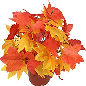 Crt Gucy 2PCS Artificial Shrubs Fake Fall Bushes Large Silk Autumn Maple Leaves Bundles 84