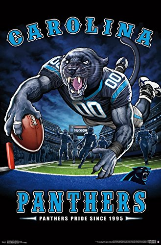 24.25 x 35.75 Trends International Wall Poster End Zone 17 Carolina Panthers Prints
