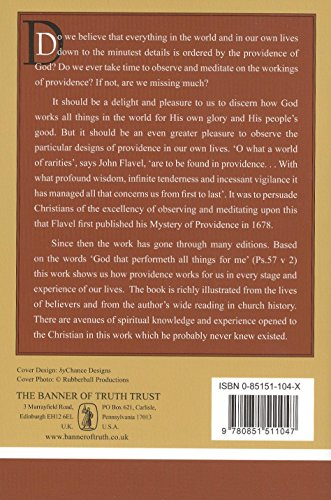 Mystery of Providence (Puritan Paperbacks)