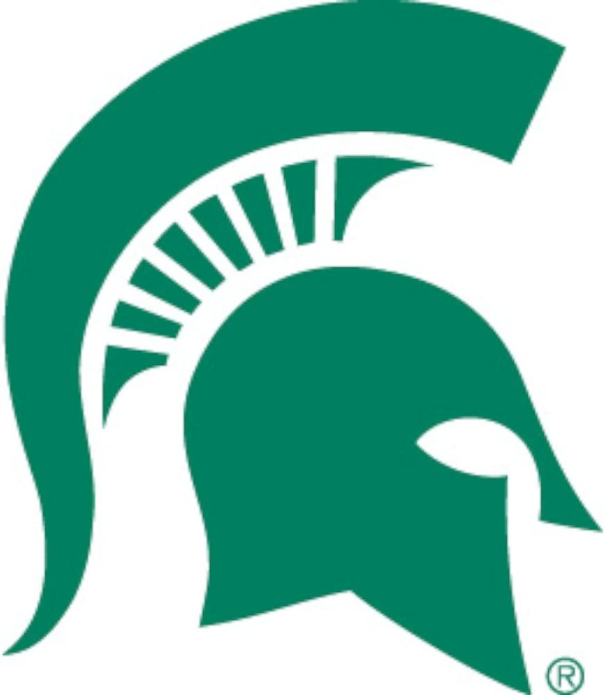 Axiz Group PWR220101 Michigan State Power Decal