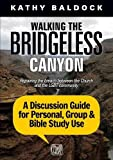 Walking the Bridgeless Canyon: A Discussion Guide for Personal, Group & Bible Study Use: Repairing the Breach Between the Church and the LGBT Community