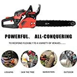 Lantusi Rancher 20-Inch 58CC 2 Strokes Gas Powered Chain Saw 3.5HP Tree Chainsaw (58cc)