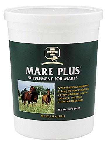 Mare Plus Supplement - Farnam Mare Plus - Size:3 LBS Color:None