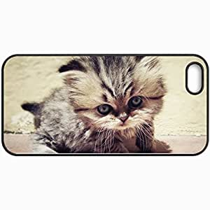 Personalized Protective Hardshell Back Hardcover For iPhone 5/5S, Kitten Looks Goldovastik Design In Black Case Color