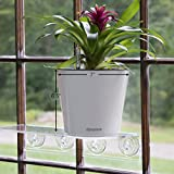 """Aquaphoric Self Watering Planter (7"""") + Fiber Soil = Foolproof Indoor Home Garden. Modern Decorative Planter Pot for All House Plants, Flowers, Herbs, African Violets, Succulents. Easy / Looks Great."""